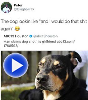 yo, dawg