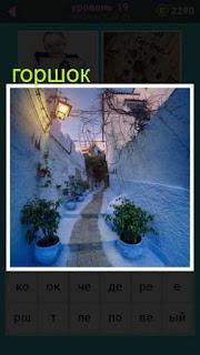на тропинке к дому зимой в горшках стоят растения и горит фонарь
