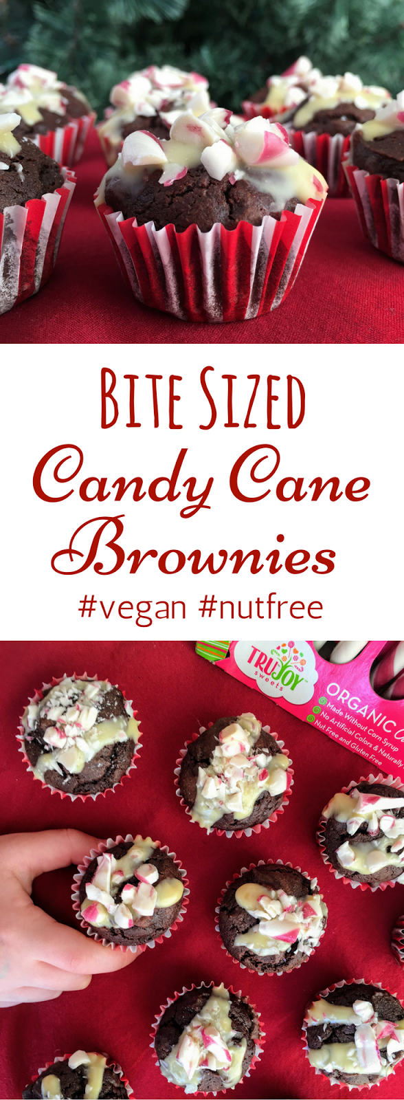 bite sized brownie bites nut free