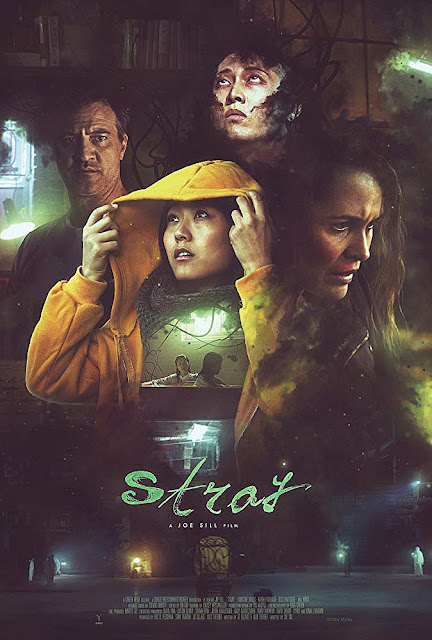 Sinopsis Film Horror Stray (2019)