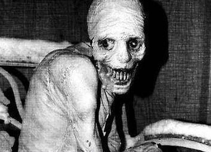 The Russian Sleep Experiment - The Most Dangerous Experiment Ever Performed
