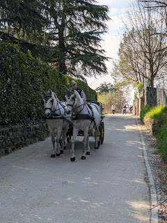 A horse and carriage on Via Castello Presati.