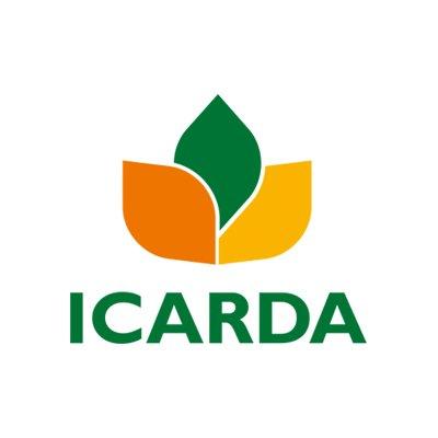ICARDA Egypt Internship | Communications intern - Social Media