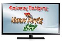 foinikas-polixnis-iason-aygis-live