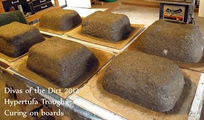 Divasofthedirt,troughs curing