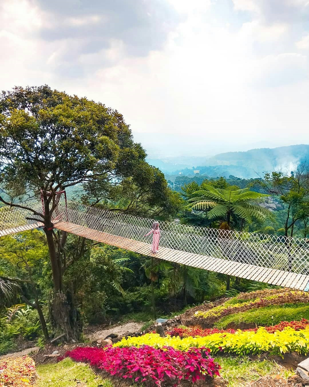 Keindahan Alam Bukit Halimun Bandung
