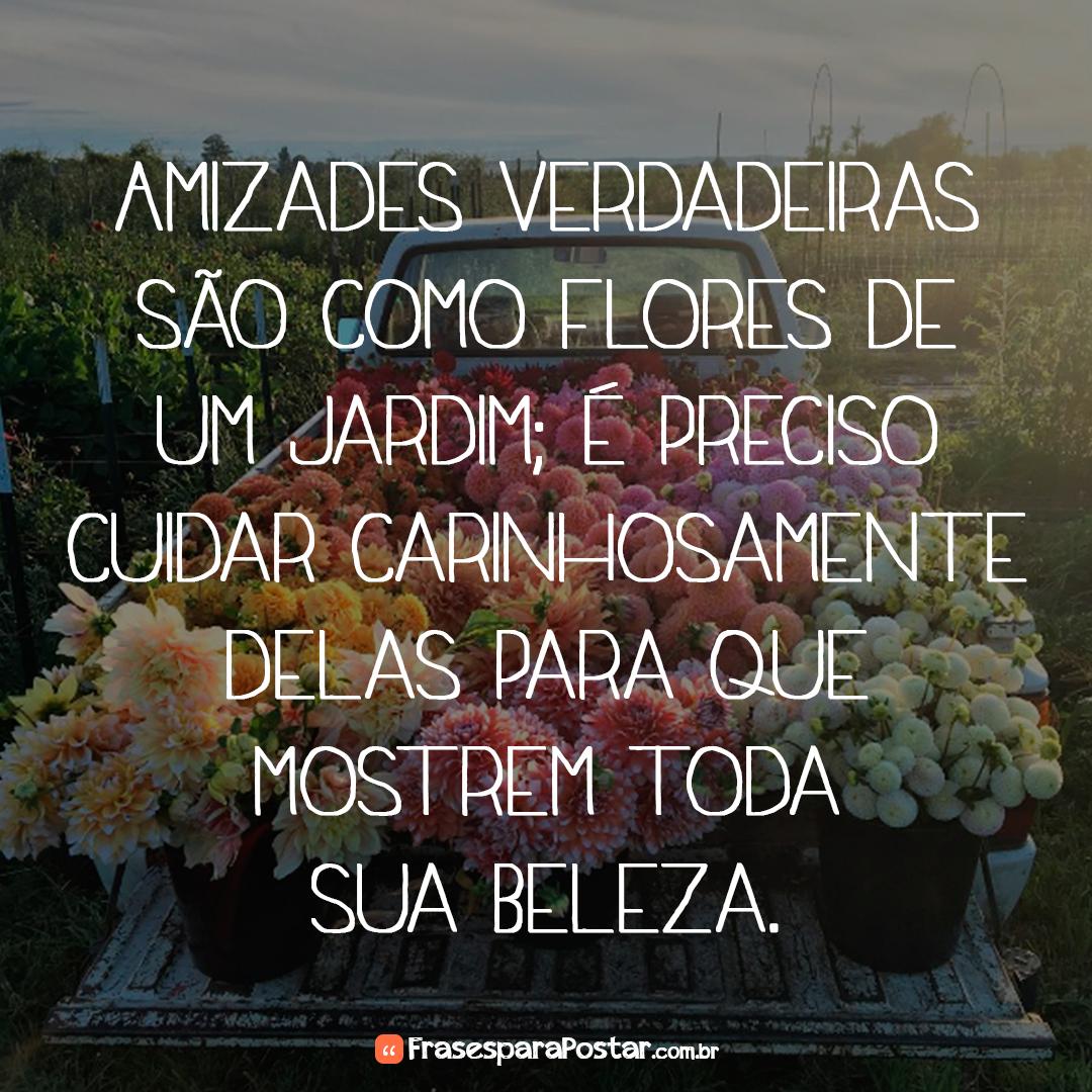 Amizades verdadeiras são como flores de um jardim; é preciso cuidar carinhosamente delas para que mostrem toda sua beleza.