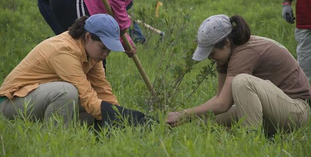 Φιλιππίνες: Αν δεν φυτέψεις 10 δέντρα... δεν παίρνεις απολυτήριο!