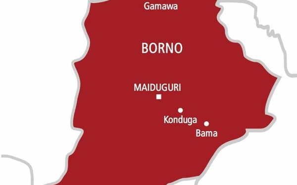 BREAKING: Borno meets over surrendered Boko Haram fighters