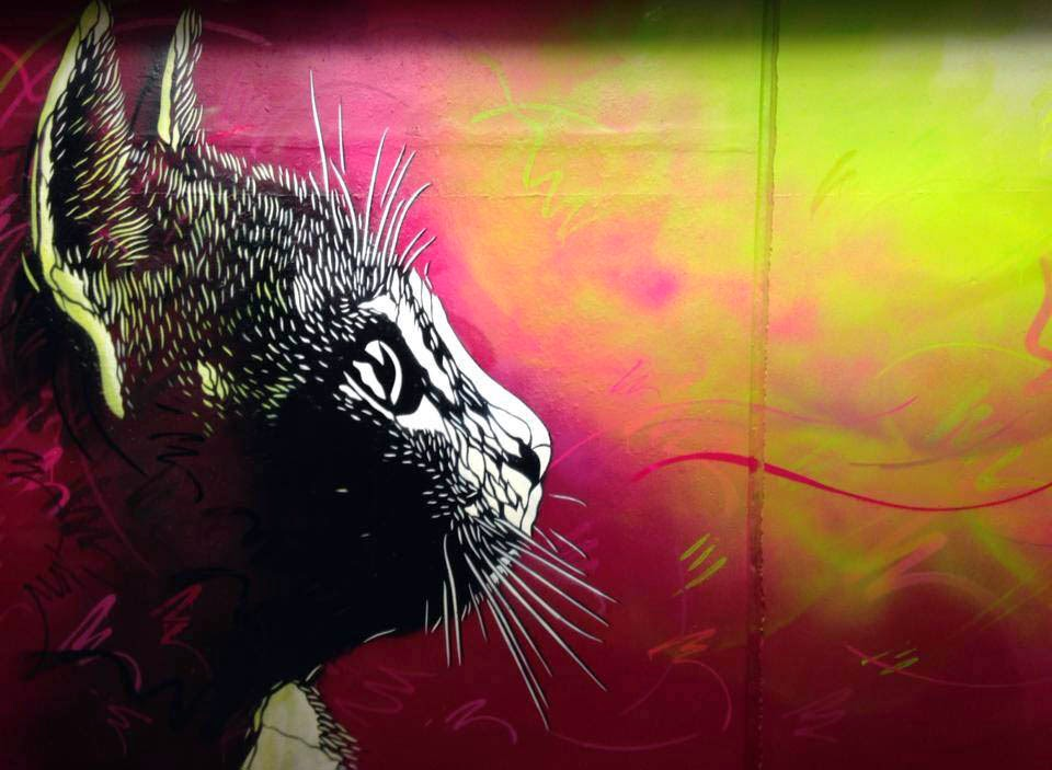 New Street Art Pieces by French stencil artist C215 in Ulstein and Bergen, Norway. 1