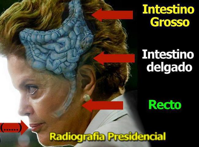 Momentos mais engraçados da presidente Dilma