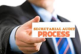 process-secretarial-audit-companies-act-2013