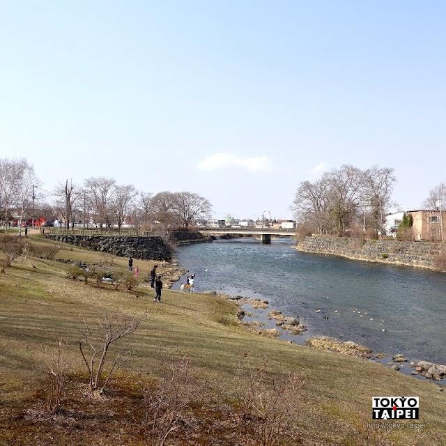 【千歲鮭魚公園】在千歲川旁看鮭魚逆流而上 還有神社告慰鮭魚之靈
