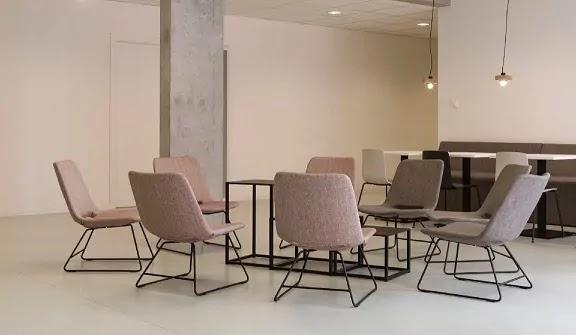 Best Lumbar Support Ergonomic Chair for Office