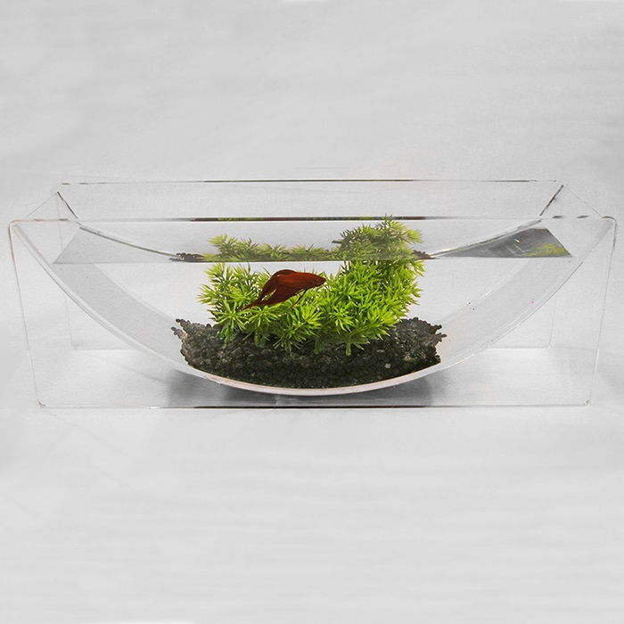 Image Betta Fish Bowl with Plant