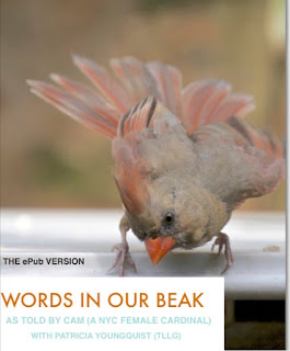 Patricia Youngquist uses words and images to tell stories about her passions. Based in New York, she currently is authoring a series of nature books on birds of the city. Now in Apple's iBooks store AND it's on Amazon.