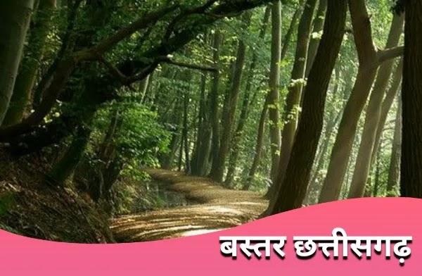 बस्तर chhattisgarh