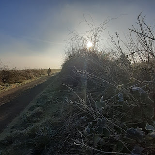 Foreground of frosted grass and brambles, background of man walking up a narrow lane, backlit by sun
