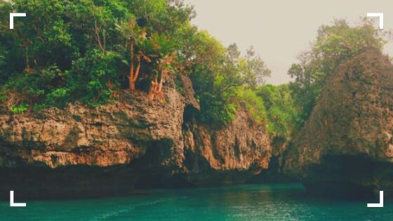 natureza, rio, arvores