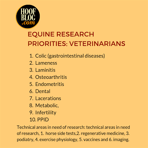 equine research priorities for veterinarians