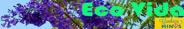 Conheça Minas Eco Vida