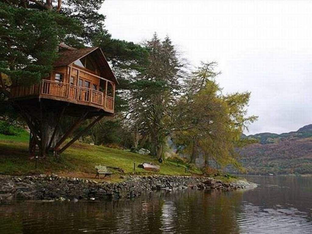 Desain Rumah Di Pohon Pinggir Sungai Minimalis