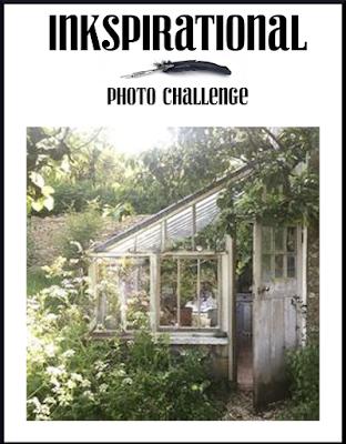 Greenhouse photo 22/07