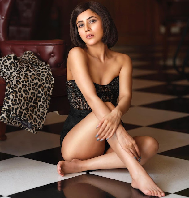 bigg-boss former contestant shehnaaz gill looks hot and bold in latest photoshoot