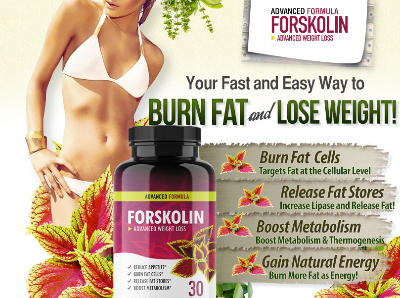 Forskolin Rapid Diet, Burn Fat and Lose Weight