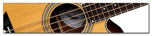 Equipo para el Bajista: Bajos Acústicos