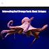 ऑक्टोपस से जुड़े कुछ रोचक तथ्य – Interesting And Strange Facts About Octopus