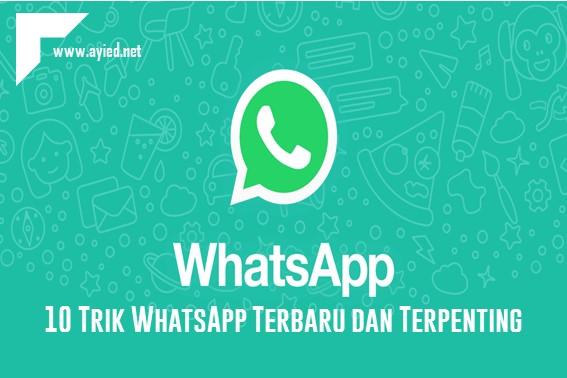 10 Trik WhatsApp Terbaru dan Terpenting