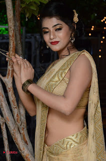Actress Yamini Bhasker Pictures in Saree at anic Movie Audio Launch  0061.JPG