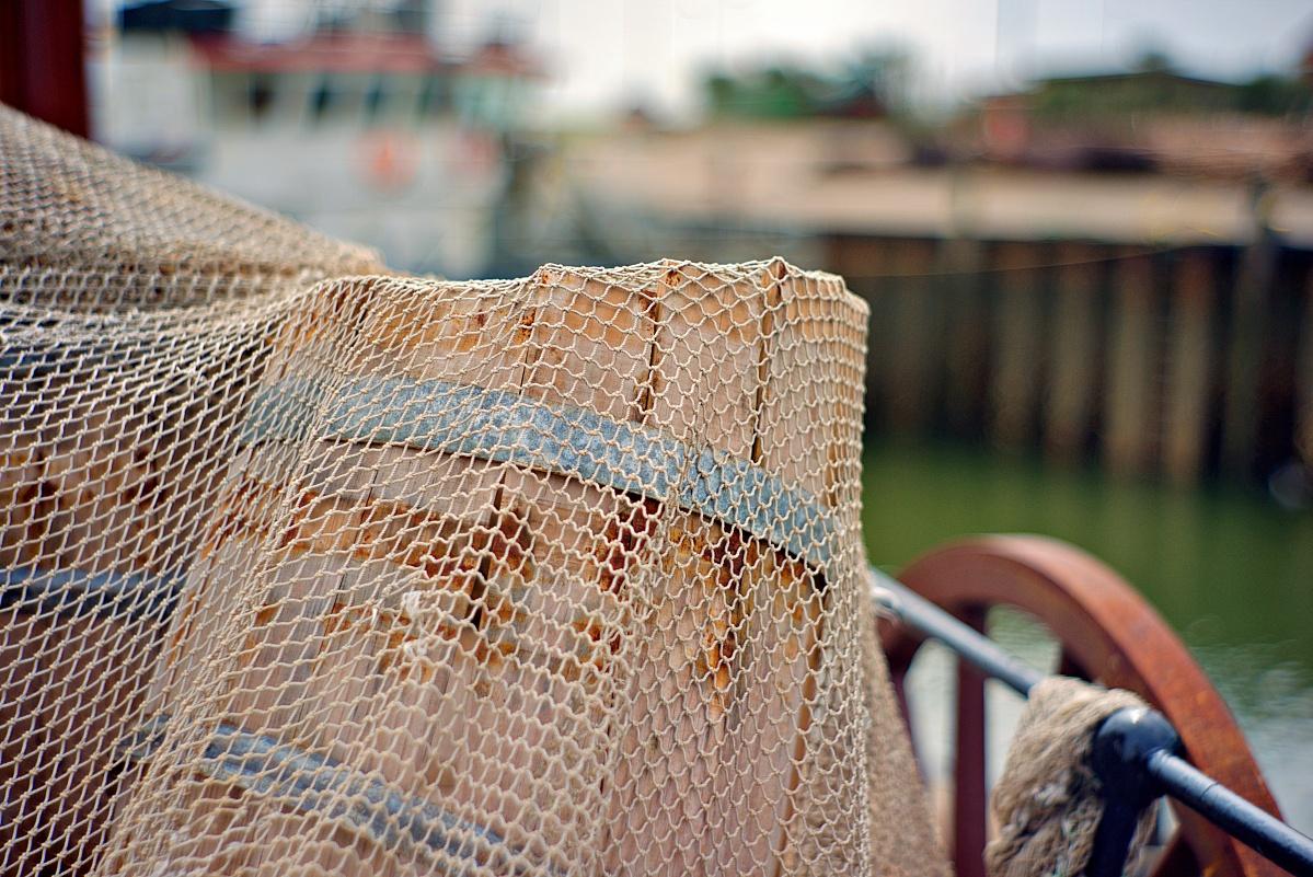Im Büsumer Hafen (6)