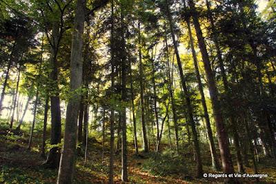 Le Gour de Tazenat, Auvergne, en automne.