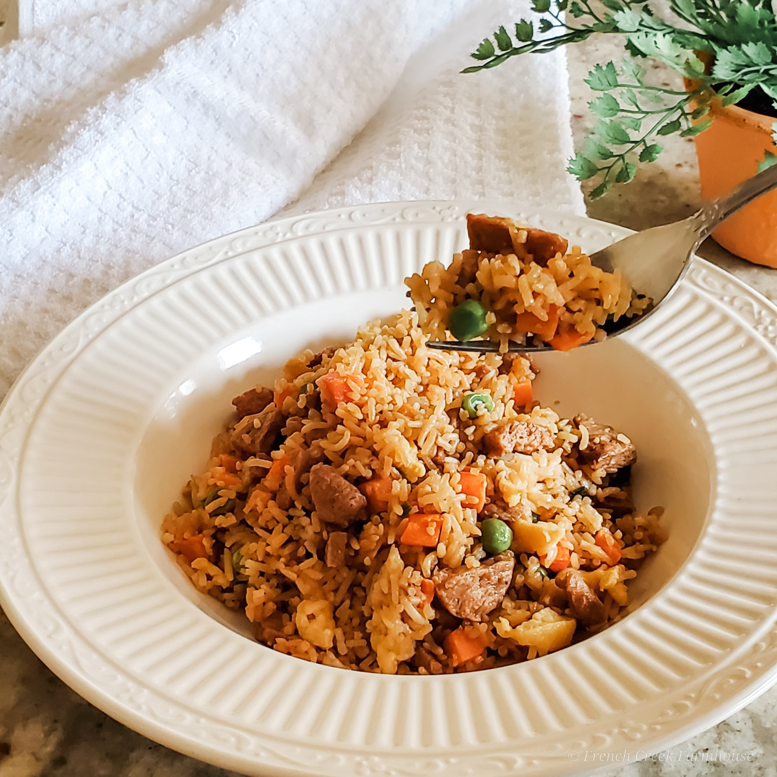 The fried rice you crave, made at home in only 20 minutes!