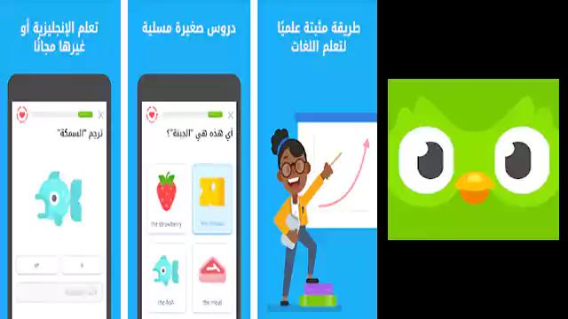 تحميل تطبيق اندرويد Duolingo تعليم اللغات