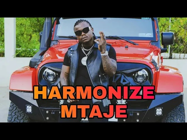 Harmonize - Band Rehearsal ( Video )