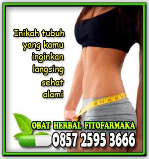 pelangsing badan, cara langsing alami, langsing tanpa diet, langsing tanpa olah raga, paket pelangsing badan