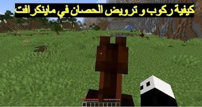 كيفية ركوب و ترويض الخيل في Minecraft خطوة بخطوة
