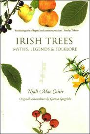 trees in irish folklore and medicine