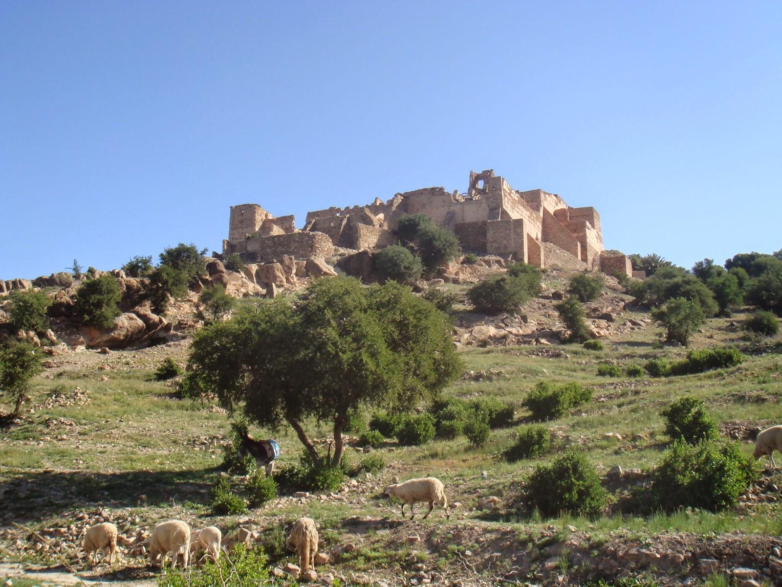 Tiout - Maroc - Morocco