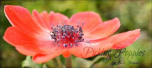 Picking Poppies: Random letters on Friday . . .