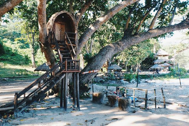 rumah pohon di pantai sendiki