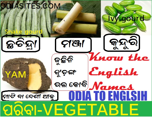 Vegetable Names in Odia and English