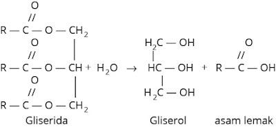 Reaksi Hidrolisis lemak atau minyak