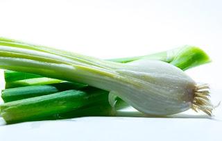 gambar Manfaat daun bawang untuk kesehatan dan untuk obat