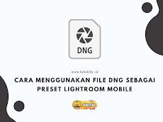 Cara Menggunakan File DNG Sebagai Preset Lightroom Mobile