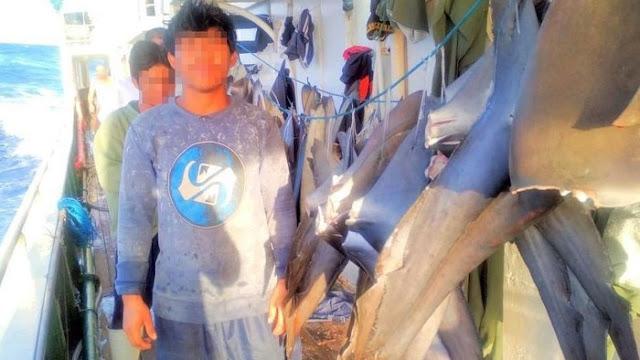 ABK Indonesia di Kapal China: Kami Ditendang, Dimaki Ketika Kelelahan