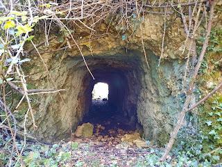 Galería o túnel de acceso a la explotación de calcita, Artaun, Bizkaia, Euskadi